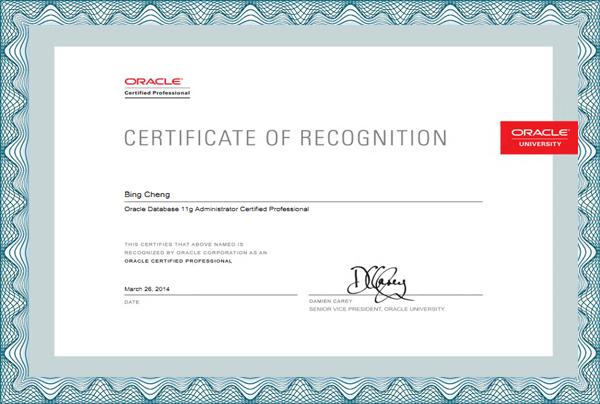 Oracle 11g OCP认证专家证书