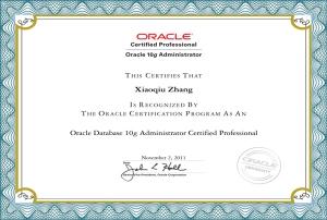 Oracle 10g OCP认证专家证书
