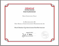 (OCM)数据库认证大师